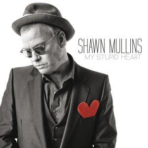 Shawn Mullins的專輯My Stupid Heart