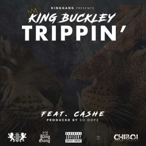 Album Trippin' (feat. Cashe) (Explicit) from Cashe