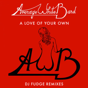Album A Love Of Your Own (DJ Fudge Remix) from Average White Band