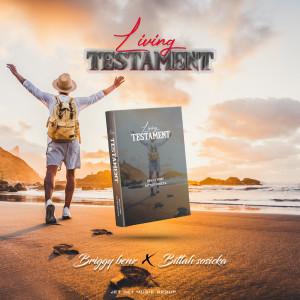 Album Living Testament from Briggy Benz