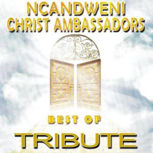 Album Zoo Loo Tribute to Ncandweni Christ Ambassadors - Best of from Zoo Loo