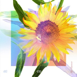 [Re:flower] PROJECT #5 dari EXID