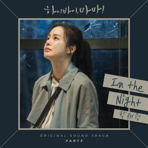 樸宰正的專輯Hi Bye Mama (Original Television Soundtrack), Pt. 5