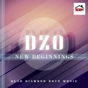 Album New Beginnings from Dzo