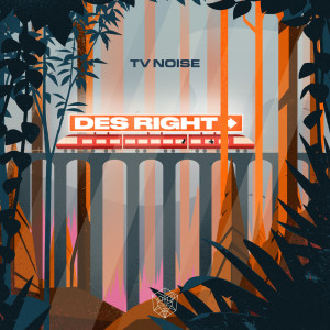 Album Des Right (Extended Mix) from TV Noise
