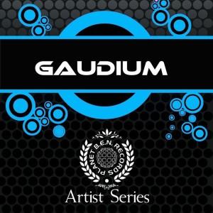 Album Artist Series from Gaudium