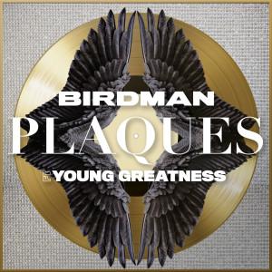 Album Plaques from Birdman