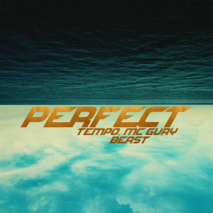 Album Perfect from Beast