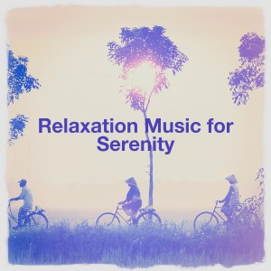 Meditation and Relaxation的專輯Relaxation Music for Serenity