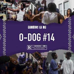 Album O-DOG #14 from Gambino LaMG