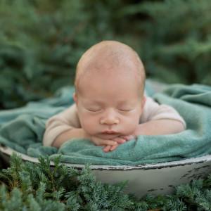 Suara Burung Santai (Piano) dari Tidur Bayi Musik