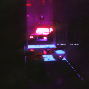 Album Nothing To See Here from DVBBS