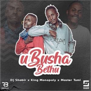 Album uBusha Bethu from DJ Shabir