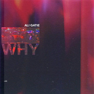 Why (Explicit)