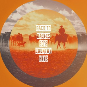 Album Back to Basics 90's Country Hits from American Country Hits