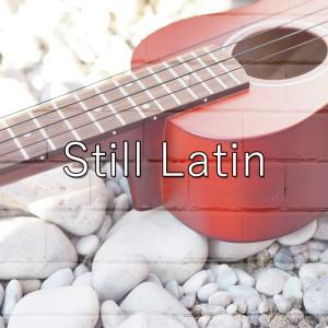 Still Latin