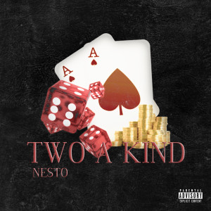 Album Two a Kind from Nesto