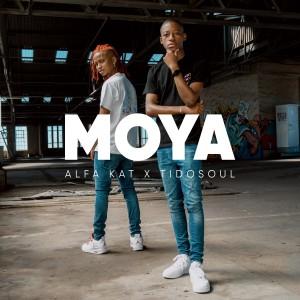 Album Moya (Explicit) from Alfa Kat