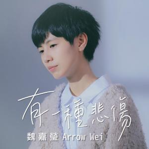 魏嘉瑩的專輯有一種悲傷