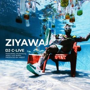 Album Ziyawa from Anzo
