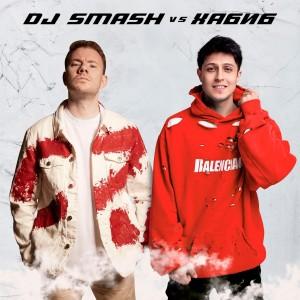 Album Ягода Малинка (DJ SMASH vs. Хабиб) from DJ Smash