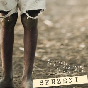 Album Senzeni from DJ Manzo SA