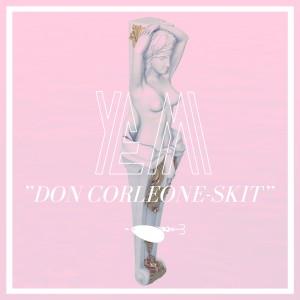 Album Don Corleone - skit from Yemi