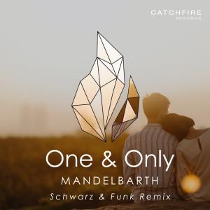 Album One & Only (Schwarz & Funk Remix) from Mandelbarth