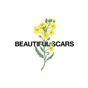 Beautiful Scars dari Maximillian