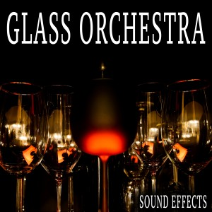 Sound Ideas的專輯Glass Orchestra Sound Effects