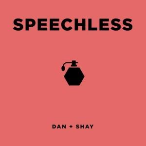 收聽Dan + Shay的Speechless歌詞歌曲
