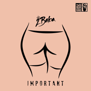 Album Important from 2baba