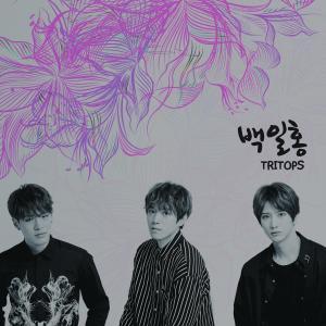 Tritops的專輯百日紅