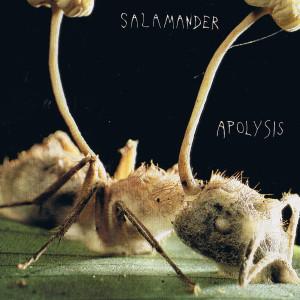 Album Apolysis from Salamander