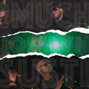 Album Susti from 2Much