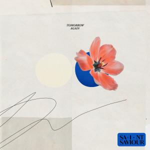 Album Paris from Saint Saviour