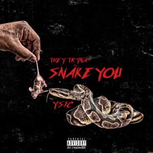 Y Sic的專輯They Trying to Snake You (Explicit)