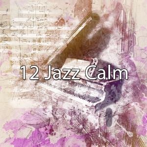 Piano Music的專輯12 Jazz Calm