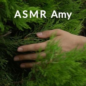 Album Relaxing Asmr Sounds Vol. 1 from ASMR Amy