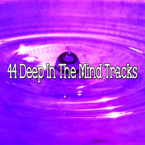 Yoga Music的專輯44 Deep in the Mind Tracks