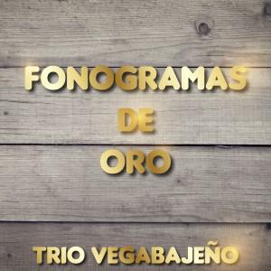 Album Fonogramas de Oro: Trio Vegabajeño from Trio Vegabajeno