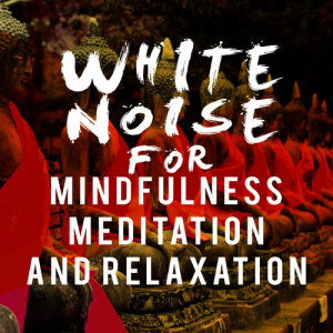 Listen to White Noise: Autumn Fall song with lyrics from Sounds of Nature White Noise for Mindfulness Meditation and Relaxation