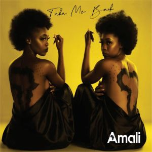 Listen to Take Me Back song with lyrics from Amali
