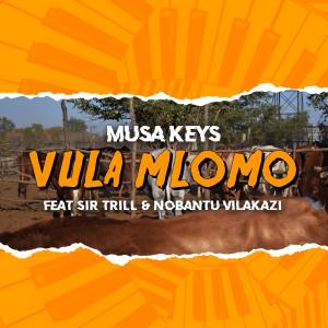 Album Vula Mlomo from Musa Keys