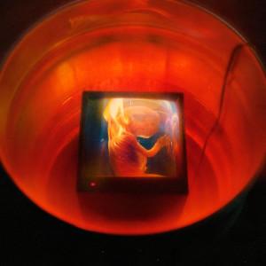 Album HARAM! (Explicit) from GoldLink