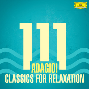 Listen to Albinoni: Adagio for Strings and Organ in G Minor song with lyrics from Eriko Sato