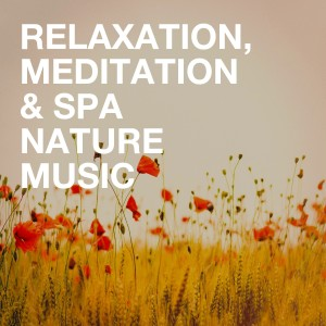 Meditation and Relaxation的專輯Relaxation, Meditation & Spa Nature Music
