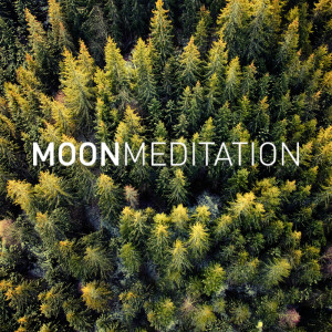 Listen to Flow song with lyrics from Moon Slaapmuziek