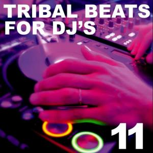 Album Tribal Beats for DJ's - Vol. 11 from Various Artists
