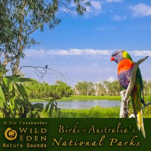 Album Birds of Australia's National Parks (feat. Dr Eric Fassbender) from Dr Eric Fassbender